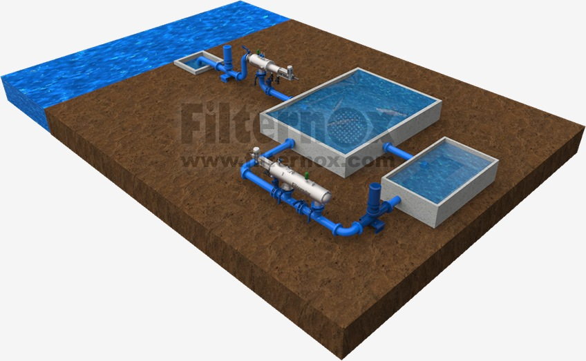 Fish Farm Water Purification